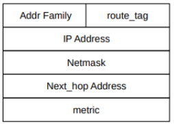 IP Routers With Simple Distance-Vector Implementation|Mininet